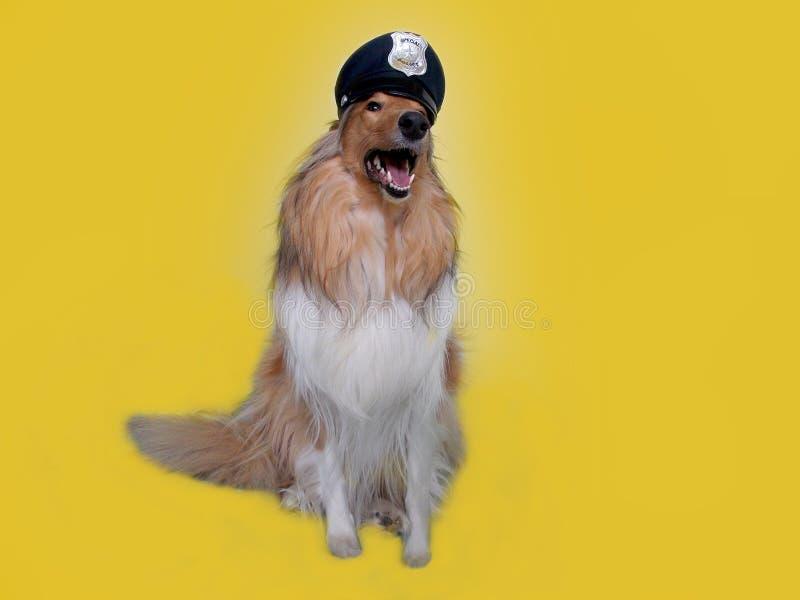 Politiehond stock foto