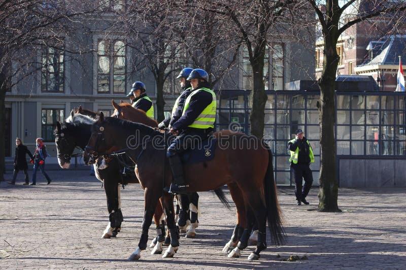 Polizei auf Pferden in Amsterdam, Holland lizenzfreie stockfotos