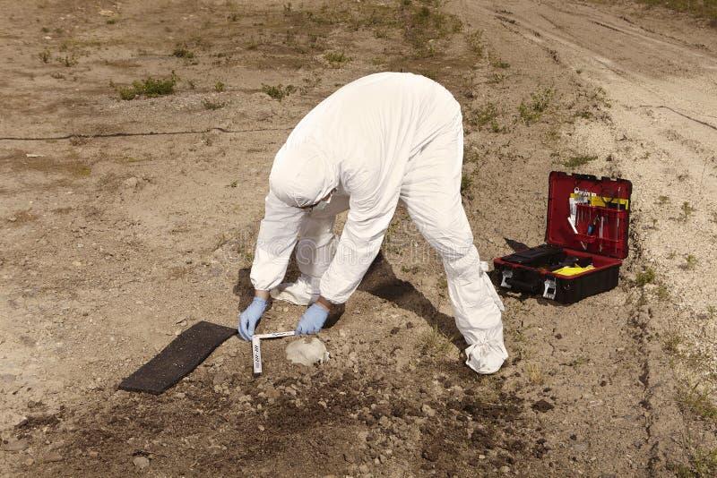 Polizei bei der Arbeit - menschlicher Schädel dokumentierend auf einfachem Bauyard während der Arbeit lizenzfreie stockfotografie