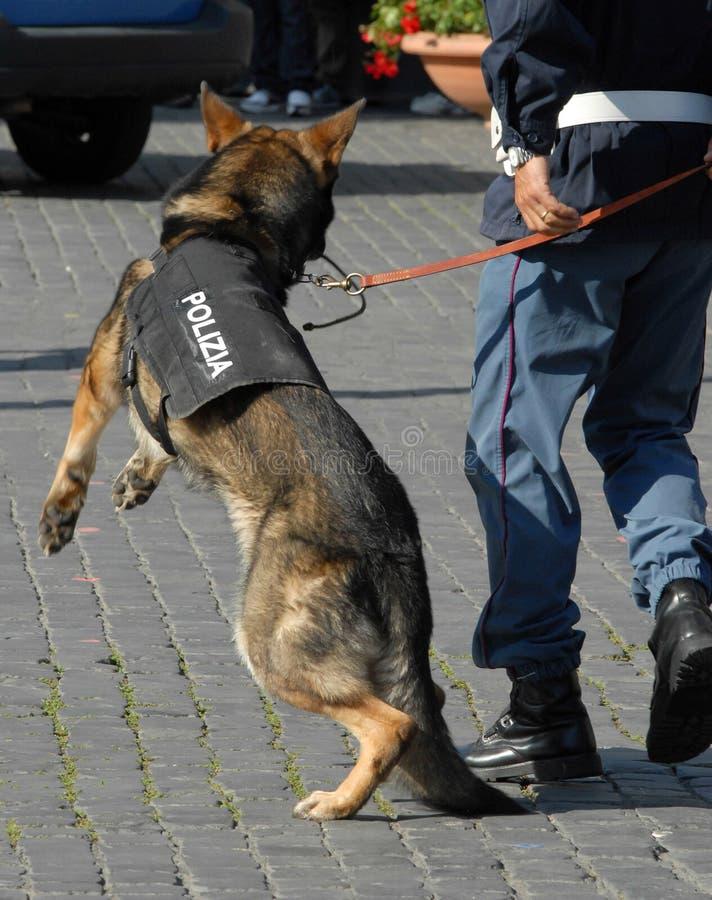 Polizia italiana immagini stock libere da diritti