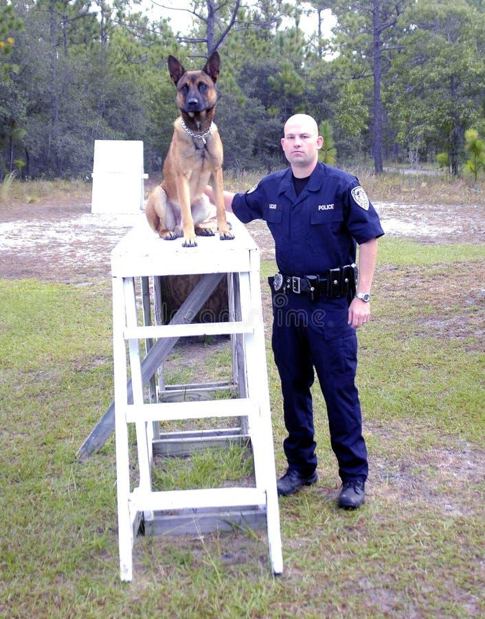 Polizia K9 fotografie stock