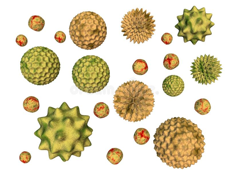 Pollen. 3d rendered of pollen particles