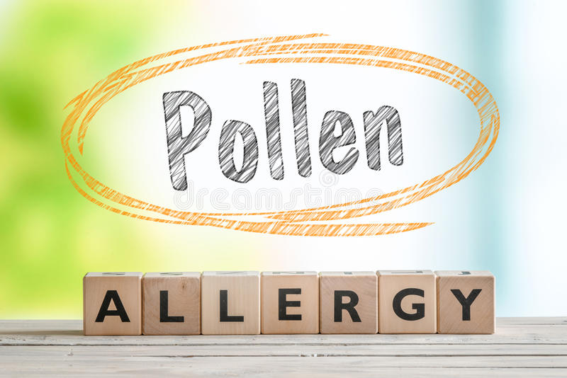 Pollen allergy headline with a wooden sign stock images