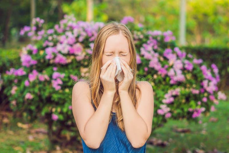 Pollenallergibegrepp Den unga kvinnan ska nysa Blomningträd i bakgrund arkivfoton