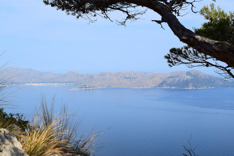 Pollensabaai van wandelingssleep dichtbij Alcudia op Mallorca royalty-vrije stock foto's