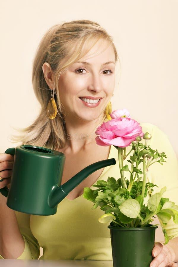 Download Pollice verde immagine stock. Immagine di flora, nave, people - 218777