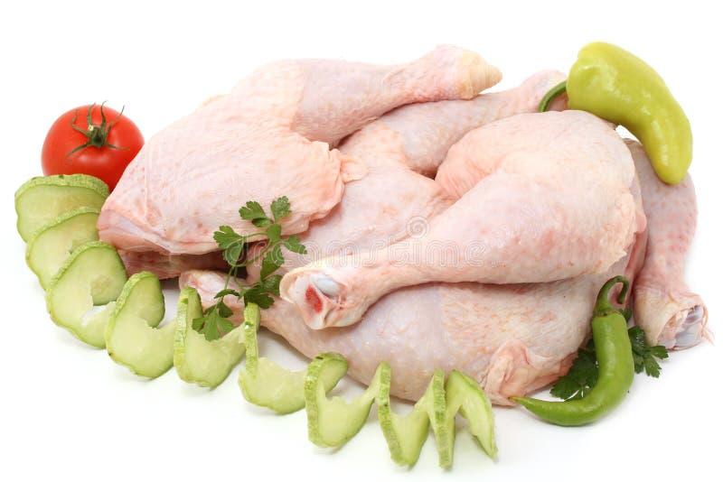 Pollo fotografie stock