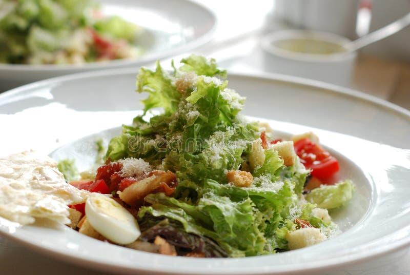 Pollo Caesar Salad imagen de archivo libre de regalías