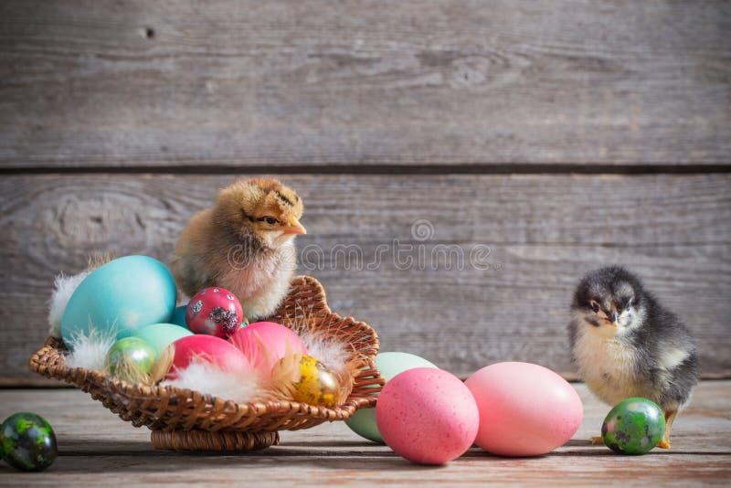 Pollo con los huevos de Pascua en fondo de madera fotos de archivo