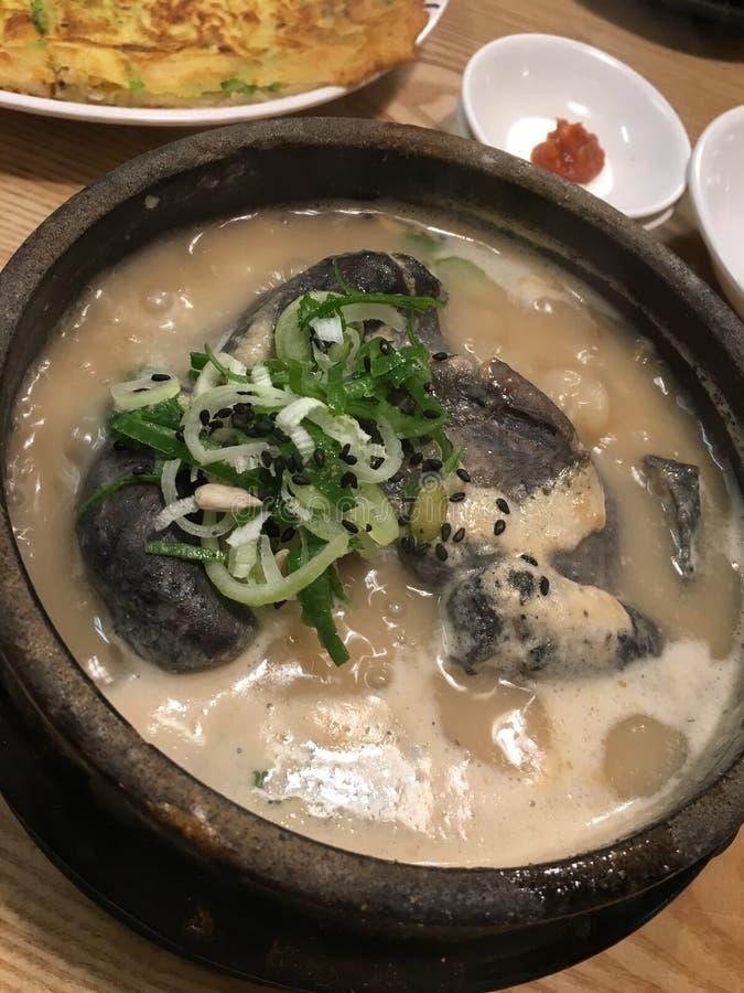 Pollo coreano del ginseng imagenes de archivo