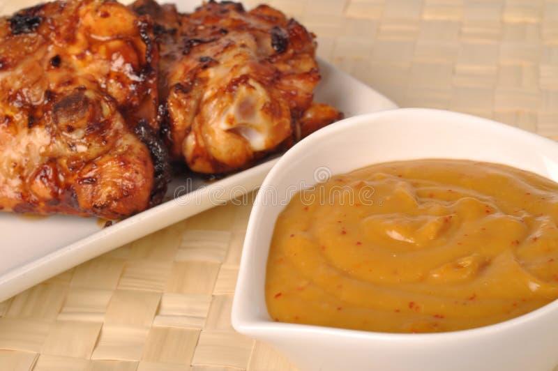 Pollo cotto con salsa fotografia stock libera da diritti
