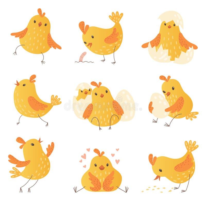 Pollo de la historieta Colección divertida de los caracteres del vector del polluelo de los pequeños pájaros amarillos lindos de  libre illustration
