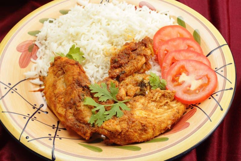 Pollo del Kashmiri con arroz imagen de archivo