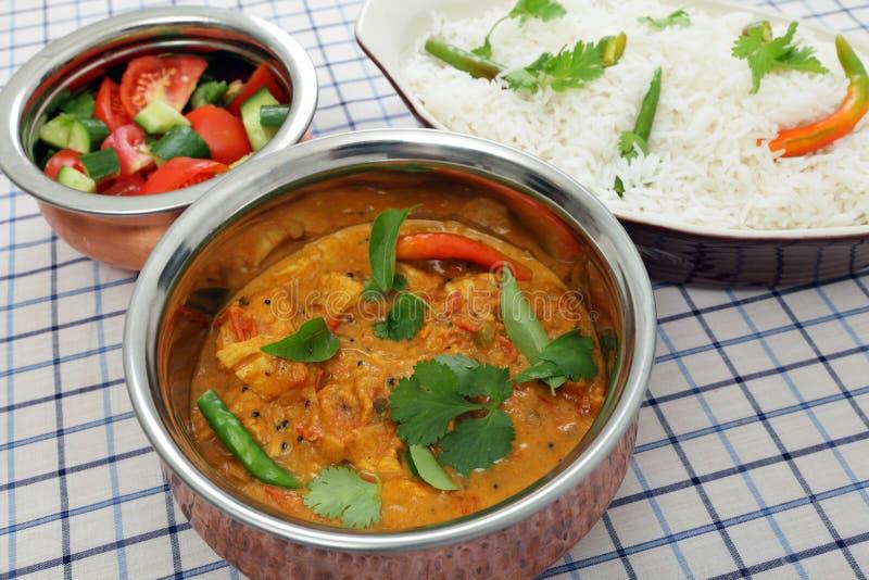 Pollo del servizio e curry del pomodoro fotografia stock libera da diritti