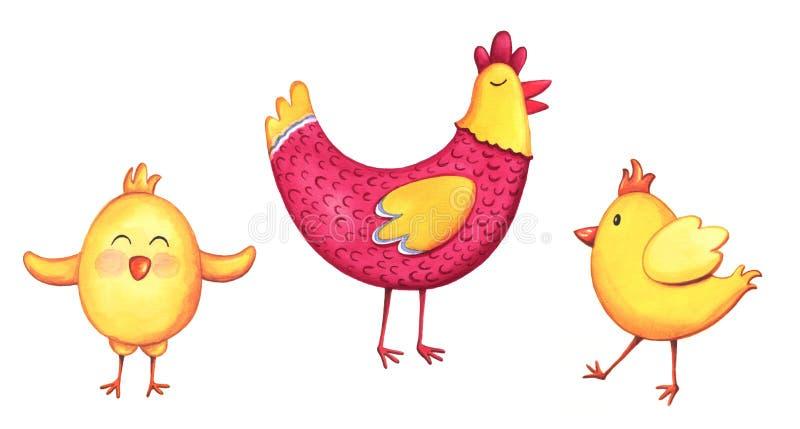 Pollo dell'acquerello ed elementi dei pulcini Illustrazioni dipinte a mano isolate su fondo bianco fotografia stock