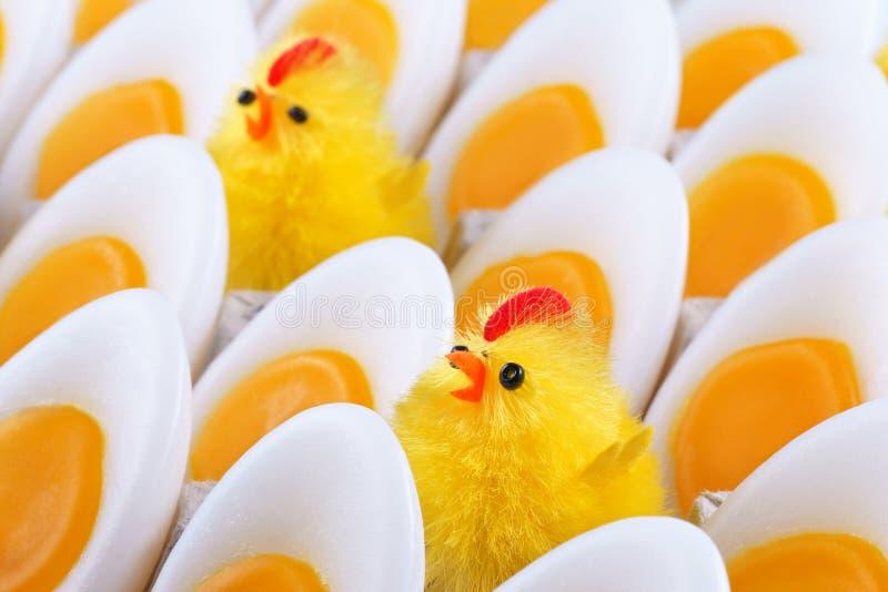 Pollo di Pasqua, candele che assomigliano alle uova fotografie stock