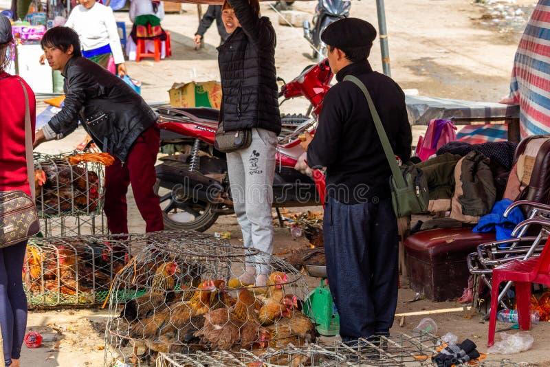 Pollo en venta en un mercado en Vietnam imágenes de archivo libres de regalías