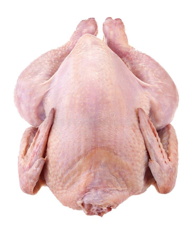 Pollo nacional fresco foto de archivo