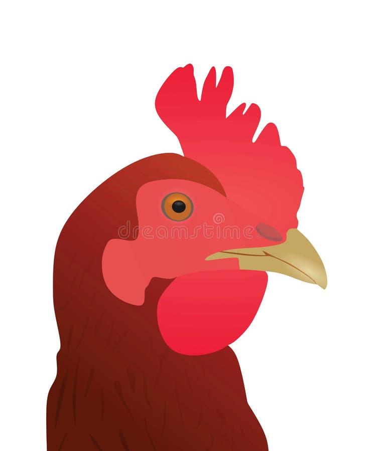 Pollo, visión cercana ilustración del vector