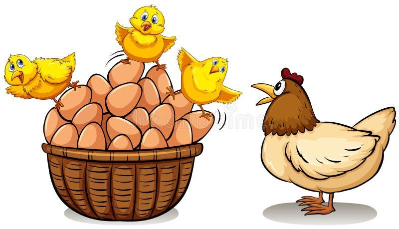 Pollo y huevos en cesta ilustración del vector
