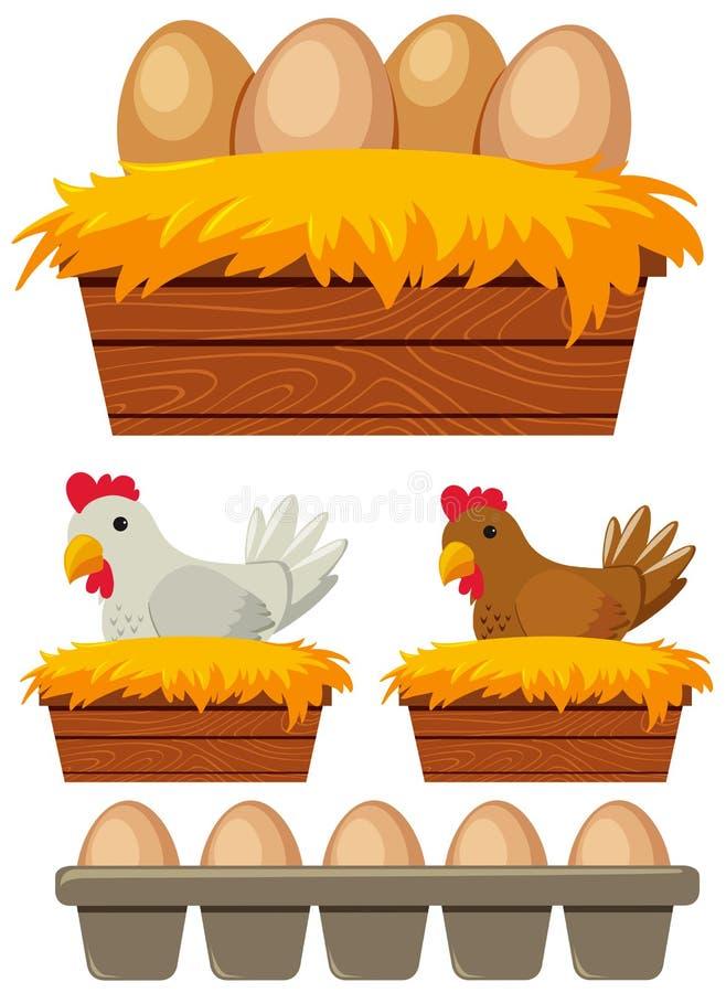 Pollo y huevos en la jerarquía ilustración del vector