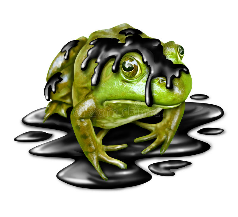 Polluted Fauna. And oil disaster victim concept as a dirty green frog with black crude petroleum liquid dripping from its amphibian skin as a symbol for the vector illustration