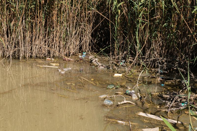 Polluted marsh water near forest with garbage floating stock photo