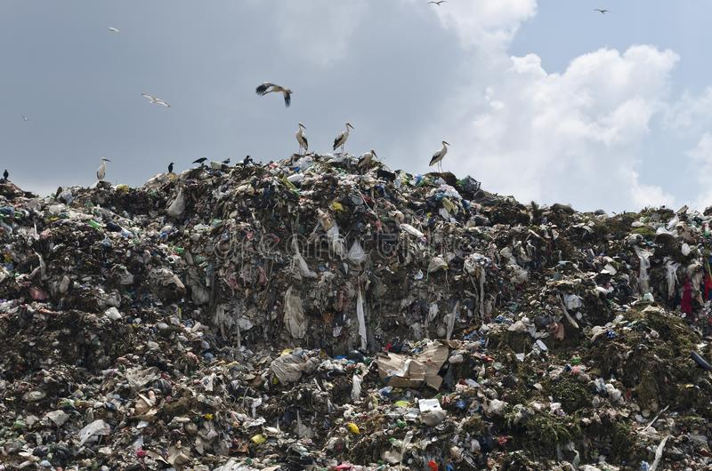 Pollution concept. Garbage pile in trash dump royalty free stock photo