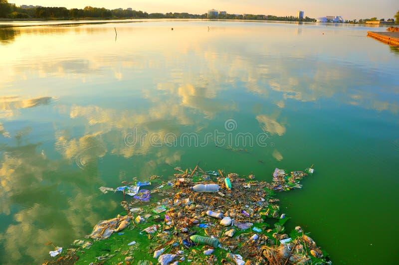 Pollution dans l'eau de mer, Roumanie photo libre de droits