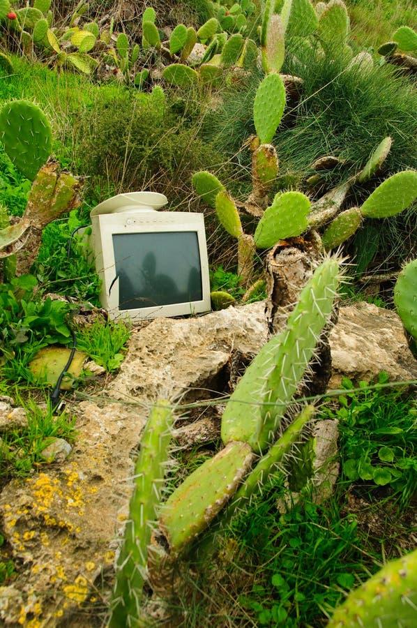 Pollution de crime de nature photo stock