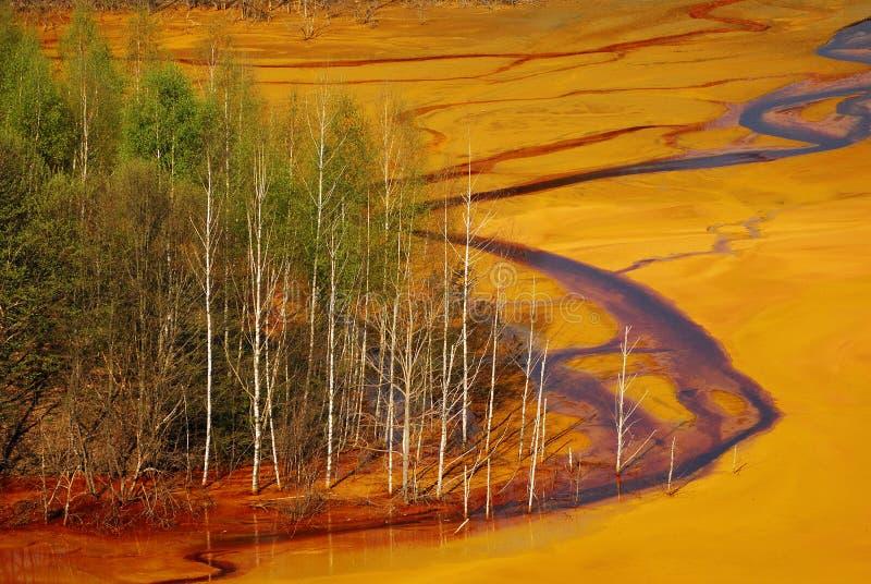 Pollution de l'eau photographie stock libre de droits