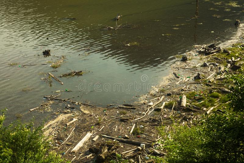 Pollution de lac en nature photos libres de droits