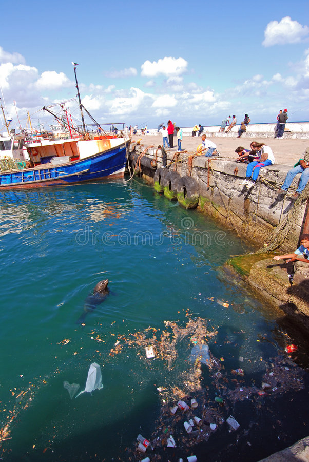Pollution In Seas Stock Images