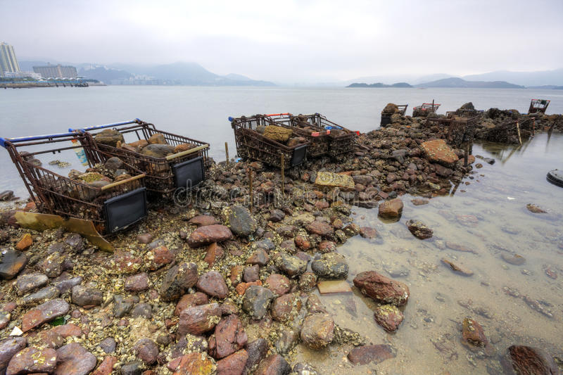 Download Pollution in seaside stock photo. Image of environmental - 12933050