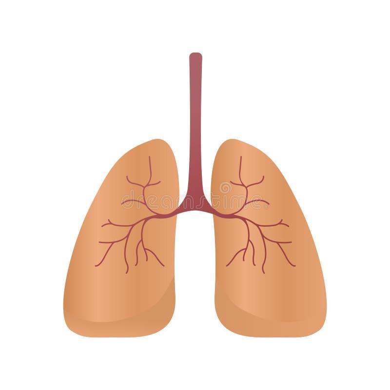 Polmoni icona, stile di vettore Organi interni dell'elemento umano di progettazione, logo Anatomia, concetto della medicina Sanit illustrazione vettoriale