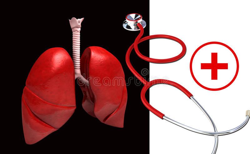 Polmoni umani, stetoscopio e simbolo clinico illustrazione vettoriale