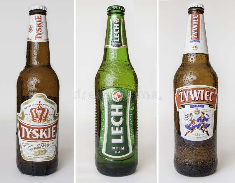 Polnische Biere eingestellt lizenzfreies stockbild