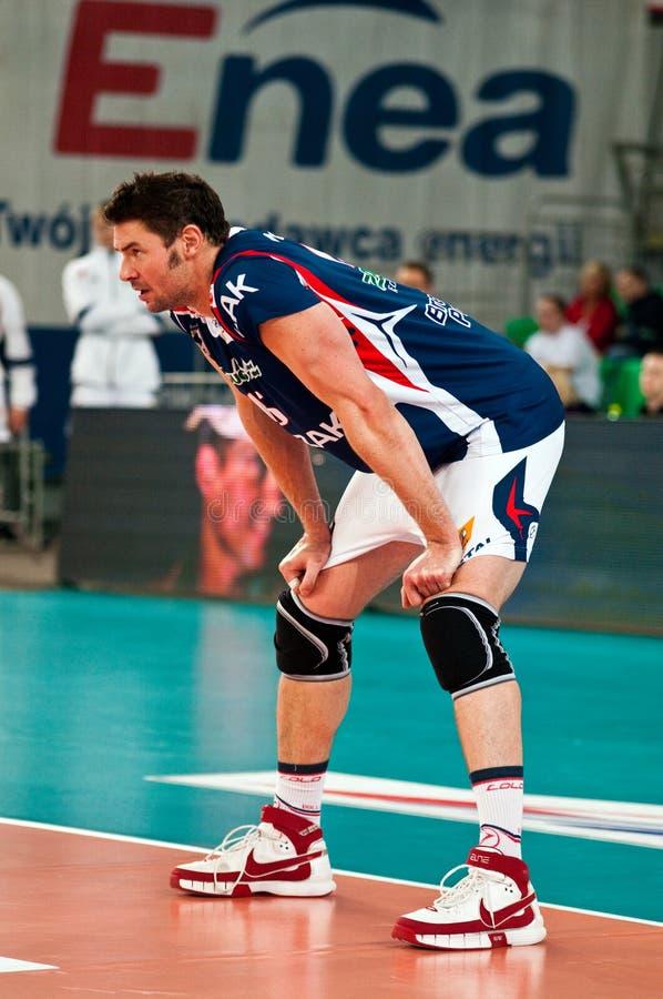 Polnische Pokalspiele des Volleyballs stockbilder