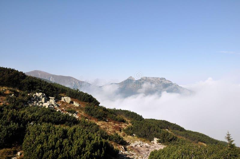 Polnische Tatra Berge stockfotografie