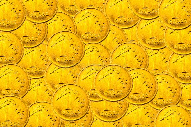 Polnische Währung lizenzfreies stockfoto