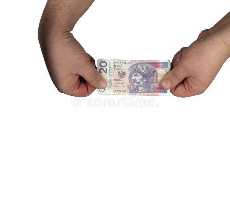 20 polnische Zlotys stockbild