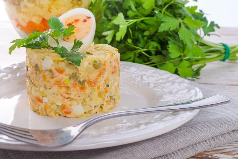 Polnischer Gemüsesalat stockfotografie
