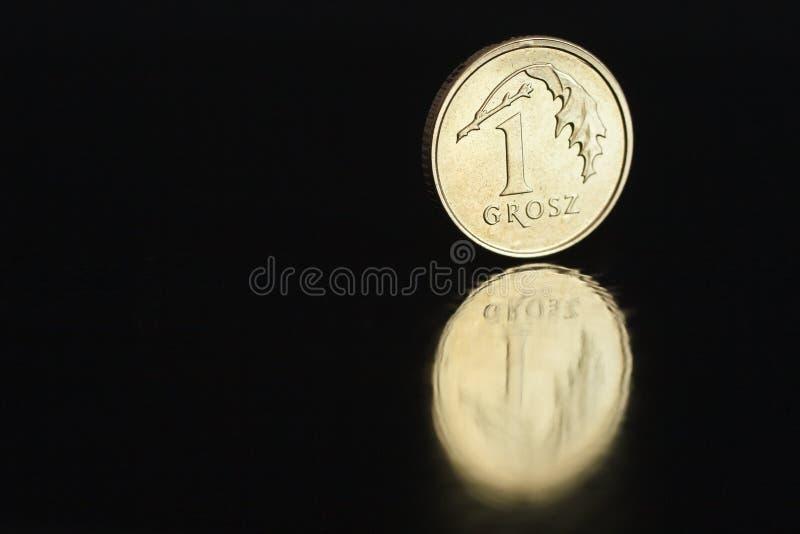 Polnischer Münze eine Grosz 2017 auf dem Rand auf schwarzem Hintergrund mit Reflexion lizenzfreies stockfoto