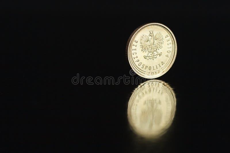 Polnischer Münze eine Grosz 2017 auf dem Rand auf schwarzem Hintergrund mit Reflexion lizenzfreie stockfotografie
