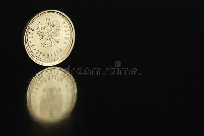 Polnischer Münze eine Grosz 2017 auf dem Rand auf schwarzem Hintergrund mit Reflexion lizenzfreie stockfotos