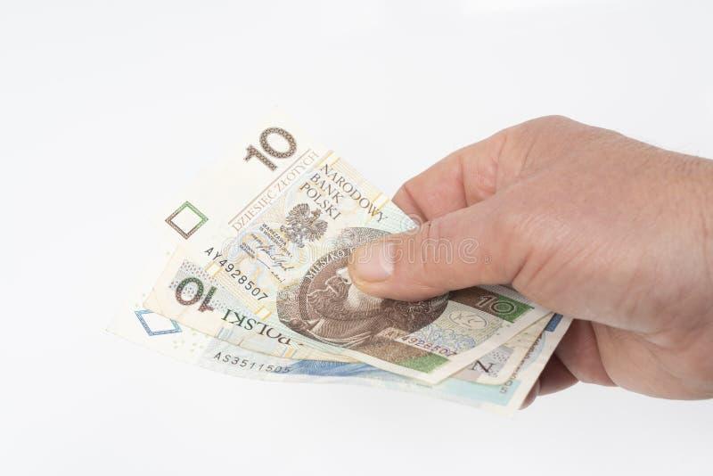 Polnischer Zloty lizenzfreie stockbilder