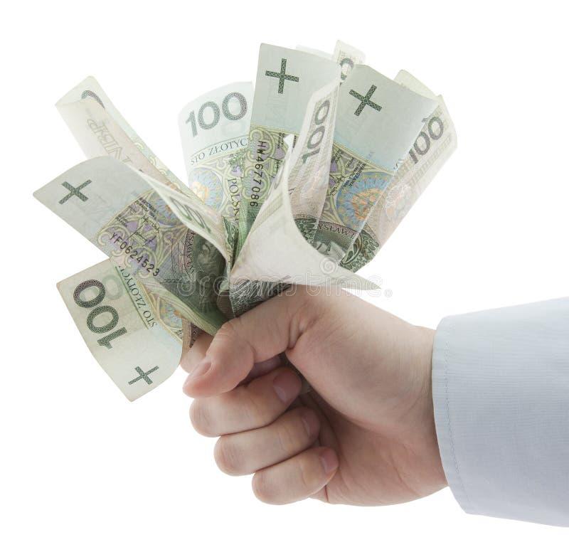 Polnisches Geld in der Hand. Ausschnittspfad eingeschlossen. lizenzfreies stockbild