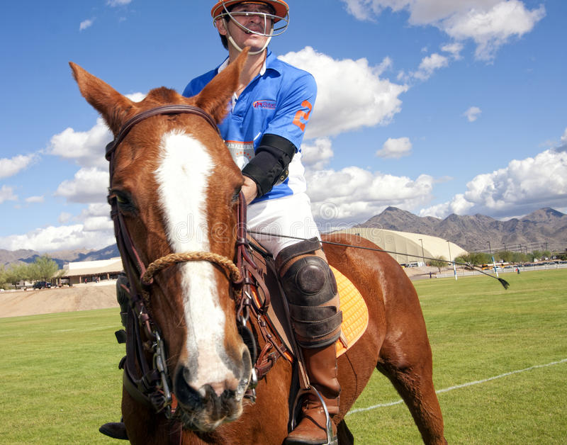 Polo. Uniformed polo players and their horse mounts gather for a game of modern polo at the first annual Polo Party, Horses and Horsepower, at WestWorld in stock photo
