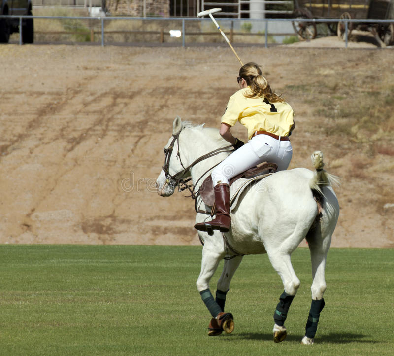 Polo Pony and Rider. Uniformed polo players and their horse mounts gather for a game of modern polo at the first annual Polo Party, Horses and Horsepower, at stock photo
