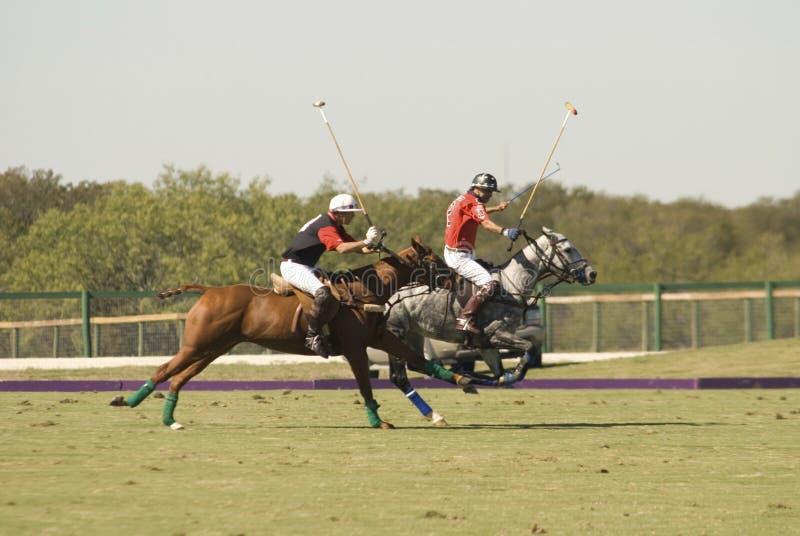 Polo-Abgleichung stockfotos